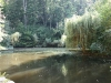 Geocache Eichensee
