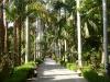 Botanischer Garten Assuan