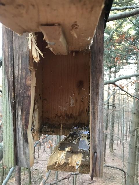 Beschossenes Vogelhaus