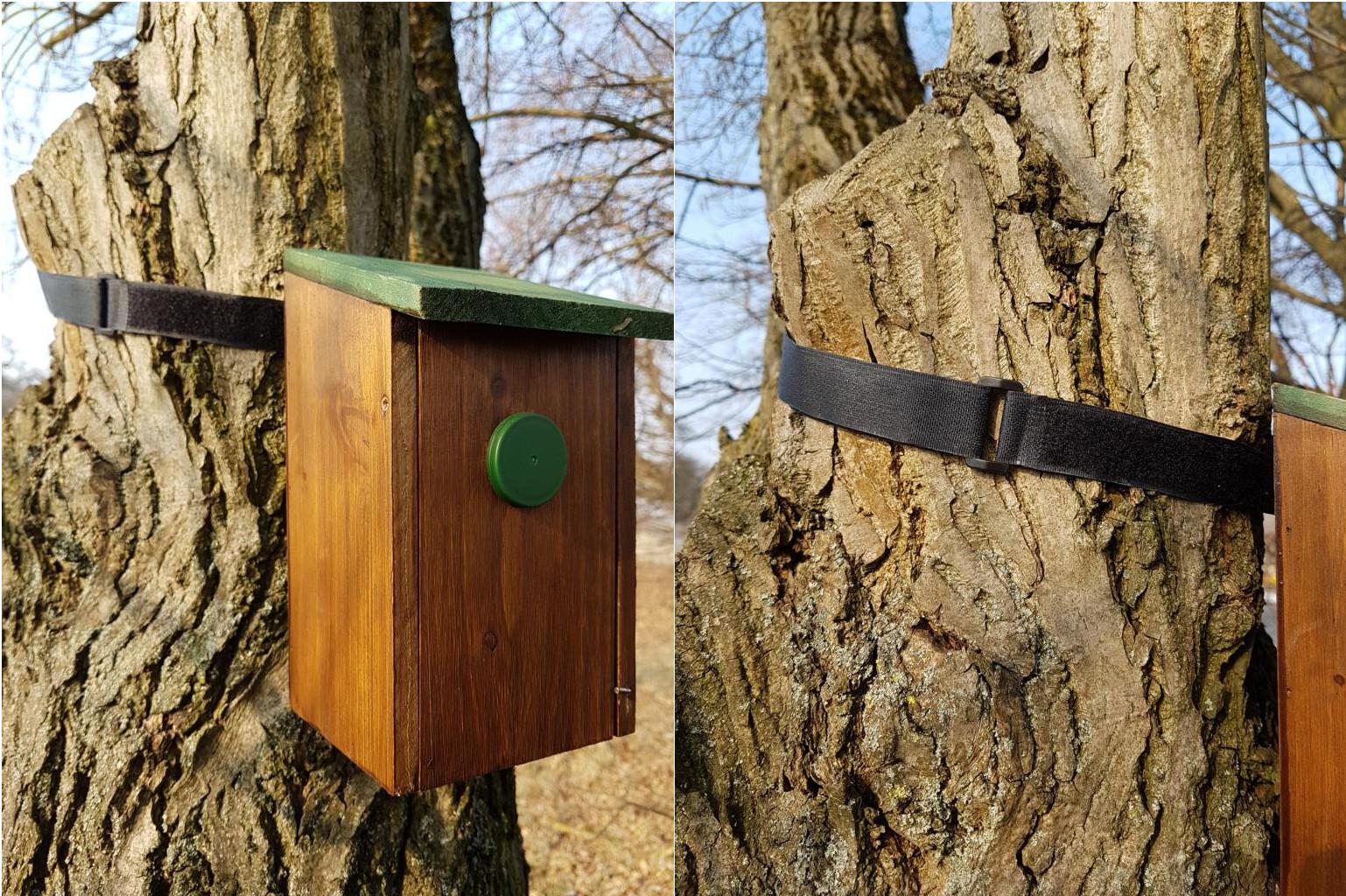 Alternative Cache-Befestigung am Baum